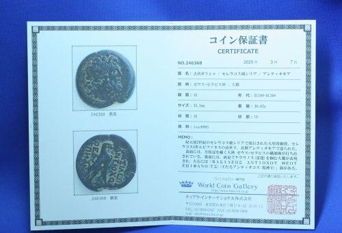Certificate246368.jpg